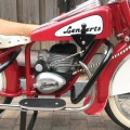 lenaerts-rood-wit-041